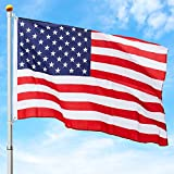 Best Choice Products 16ft Flag Pole
