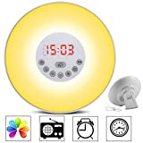 Totobay Wake Up Light Alarm Clock