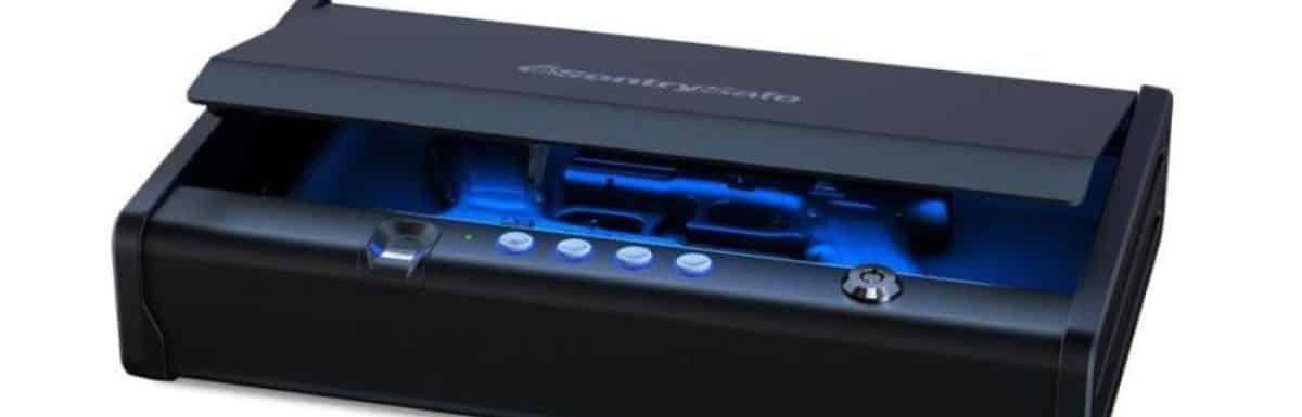 Do You Need A Biometric Gun Safe